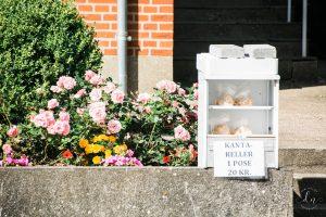 Tetanggaku jualan jamur. Kalau mau beli, tinggal ambil dan letakkan uangnya di box.